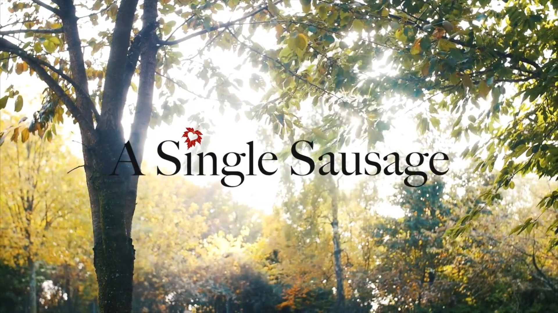 Short Film - A Single Sausage